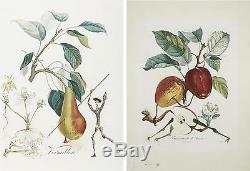 Ensemble De X15 Tres Rare Salvador Dali Fruitdalí Série / Art Botanique